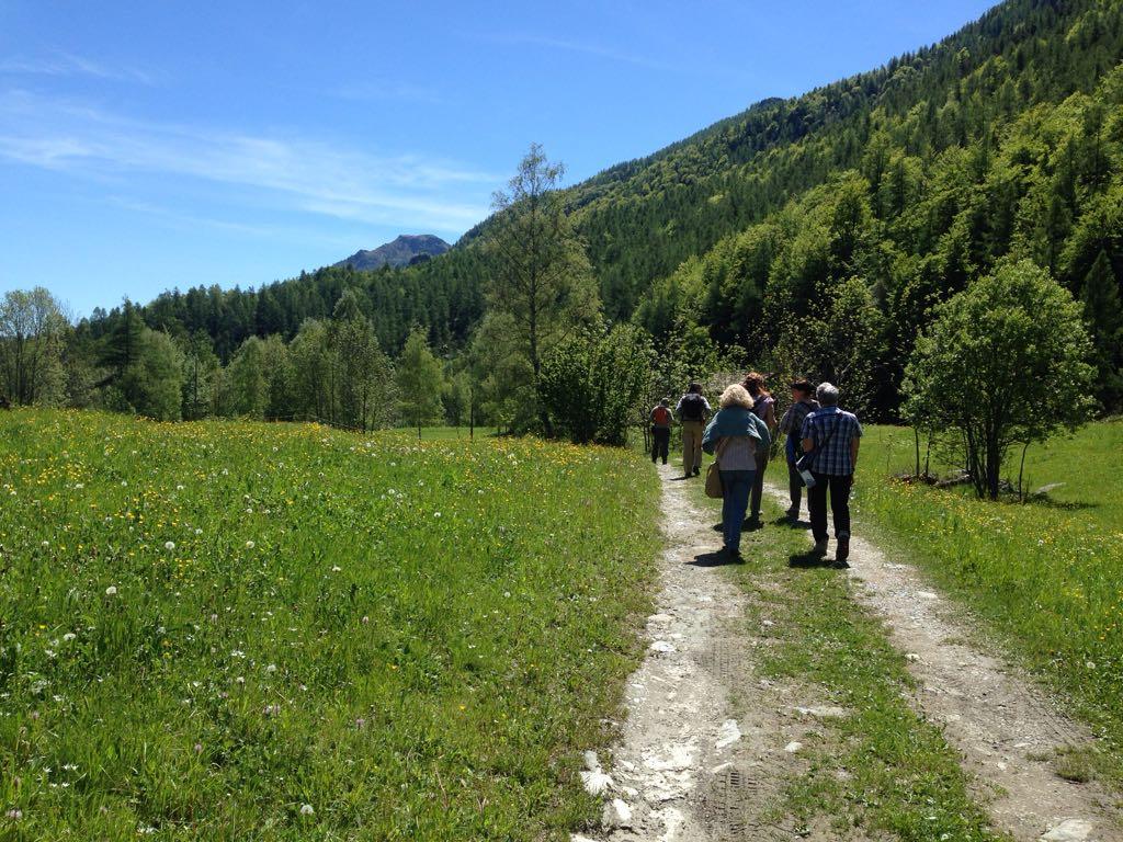 Camminata insieme alle joelette sul percorso Sindonico da Balme ad Ala di Stura