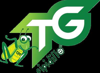 TG Cipidillo, puntata 3 stagione 2