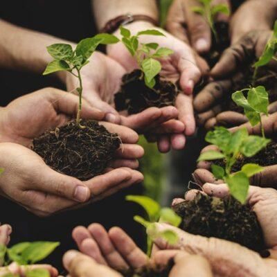 TESORI – TErre SOlidali Resilienti Inclusive– destinato agli abitanti del canavese